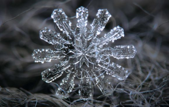 Editor's Note: The Stunning Snowflake