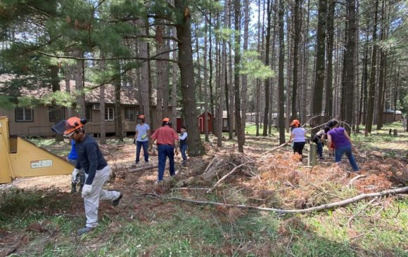 Update on Camp Wakonda Forestry Clean-Up
