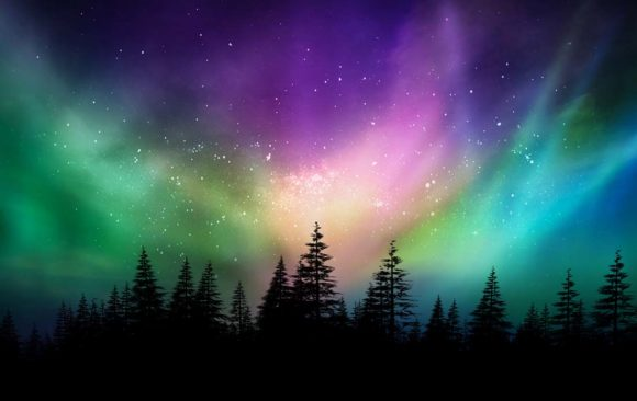 President's Perspective: Northern Lights